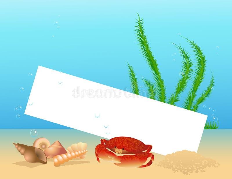 Overzees shell frame stock illustratie