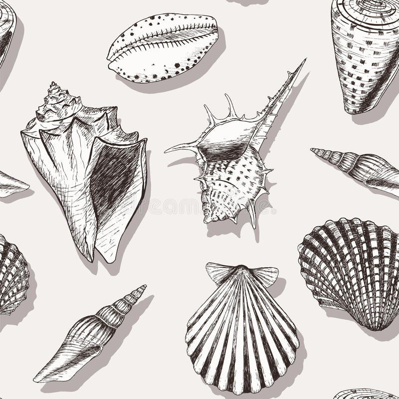 Overzees shell patroon 4 royalty-vrije illustratie