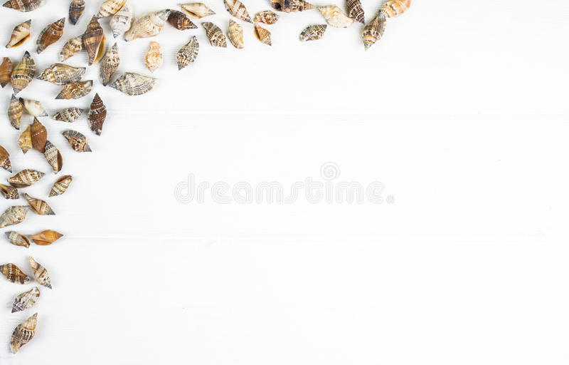 Overzees shells kader op achtergrond royalty-vrije stock foto