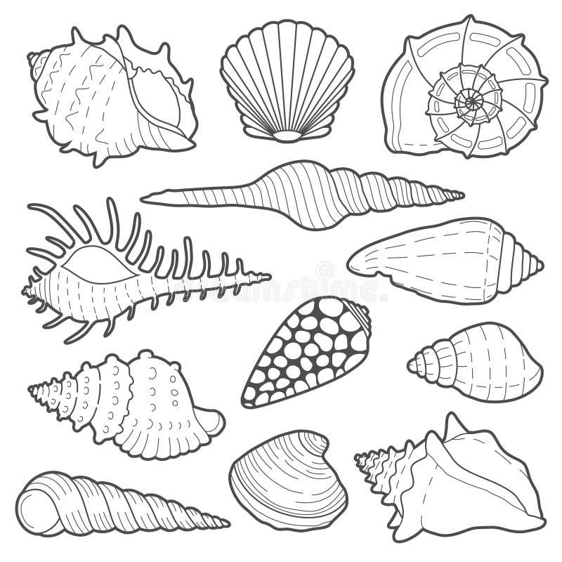 Overzees shells vectorpictogramreeks stock illustratie