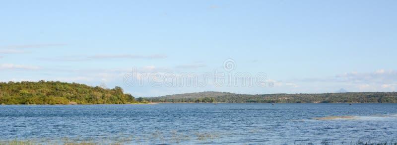 Overzees strand en rivierboom stock foto