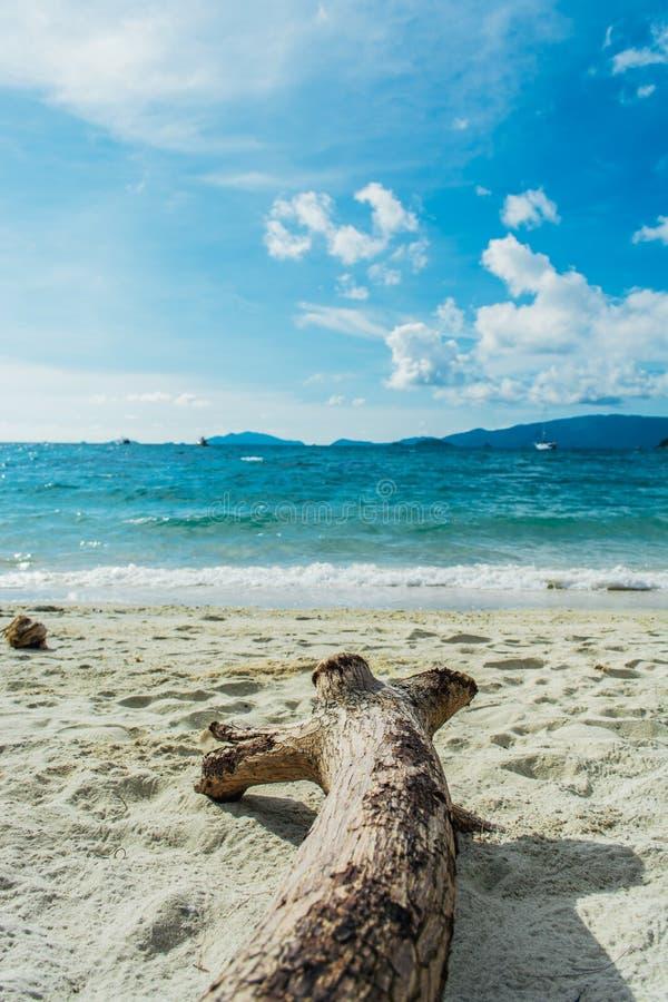 Overzees strand met hout bij Lipe-Eiland in Thailand stock fotografie