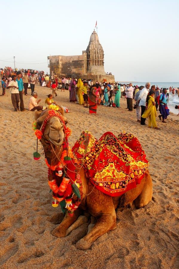 Overzees Strand van Gujarat stock afbeelding