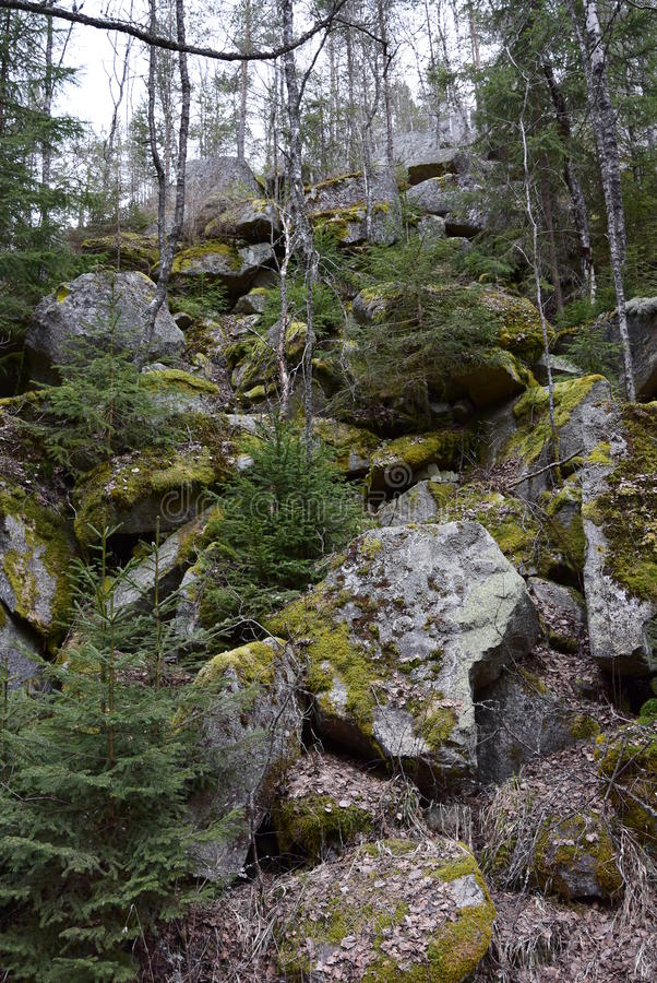 Overzees van rotsen dichtbij kleine stroom Vydra, Tsjechische Republiek stock fotografie