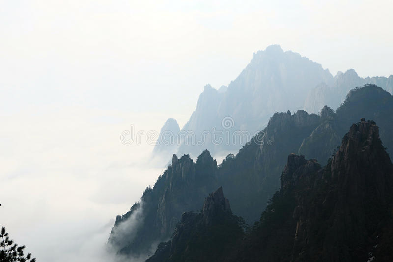 Overzees van wolk in Huangshan stock foto