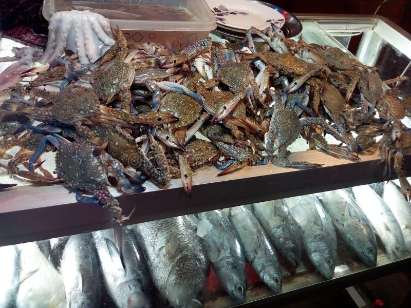 Overzees voedselmarkt in coxbazar Bangladesh, wereld grootste overzees Strand stock afbeelding