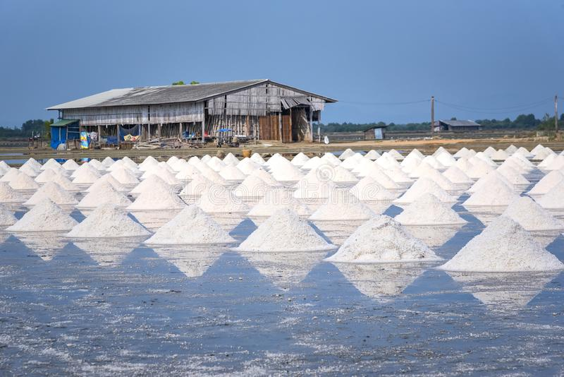 Overzees zout landbouwbedrijf dichtbij kust in Samut Songkhram, Thailand royalty-vrije stock foto's
