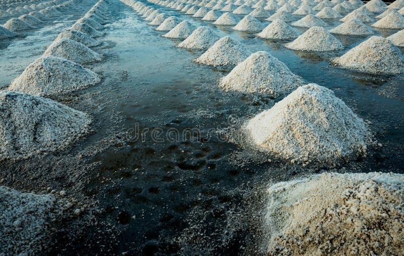 Overzees zout landbouwbedrijf in Samut Sakhon, Thailand Organisch Overzees Zout r r stock afbeeldingen