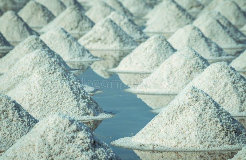 Overzees zout landbouwbedrijf in Thailand Organisch Overzees Zout r : stock foto's