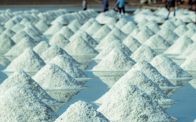 Overzees zout landbouwbedrijf in Thailand Organisch Overzees Zout r : royalty-vrije stock afbeelding