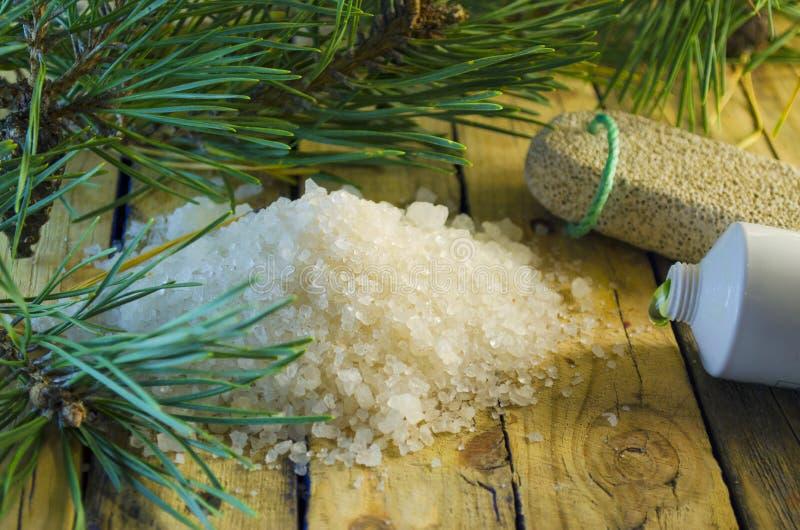 Overzees zout met een uittreksel van een naaldboom royalty-vrije stock fotografie