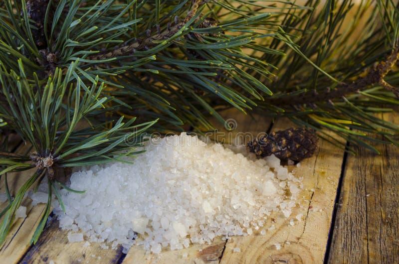 Overzees zout met een uittreksel van een naaldboom royalty-vrije stock afbeeldingen
