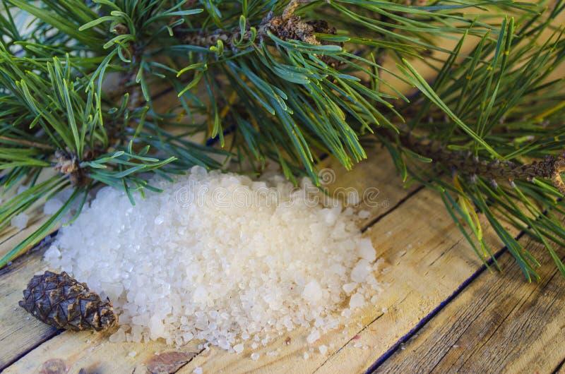Overzees zout met een uittreksel van een naaldboom royalty-vrije stock foto's