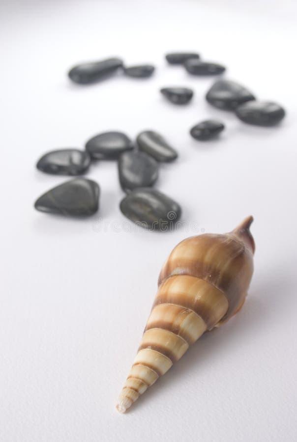 Overzeese geur - stenen en shell royalty-vrije stock fotografie