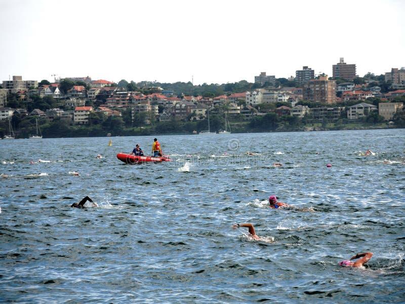 Overzeese het zwemmen gebeurtenissen royalty-vrije stock foto's