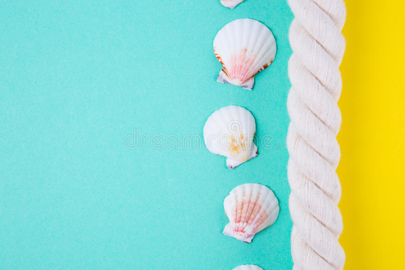 Overzeese kabel en kammosselshells op gekleurde achtergronden met negatief stock foto