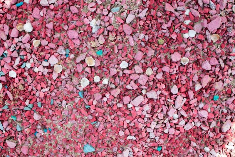 Overzeese kiezelstenen van roze kleur met shells van verschillende kleur en grootte stock foto's