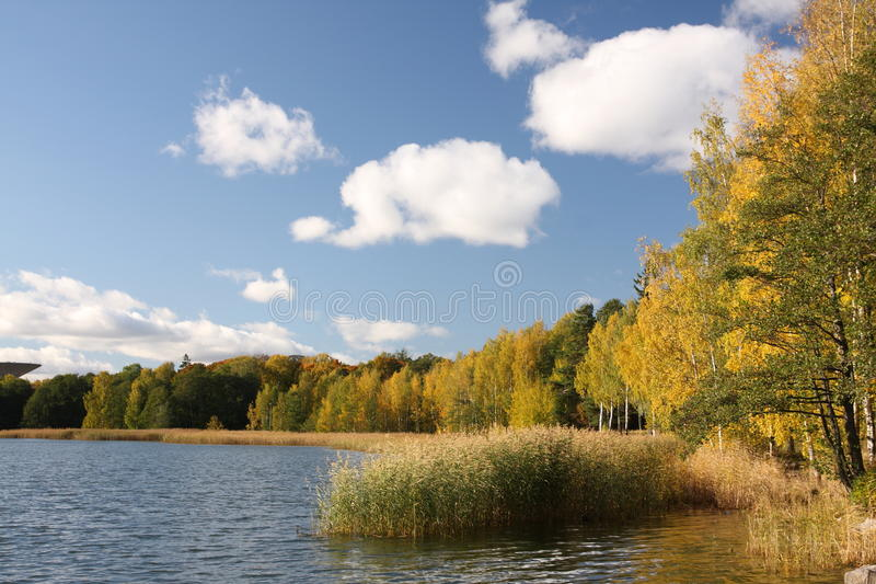 Overzeese kust in Finland stock fotografie