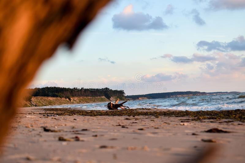 Overzeese kust met oude hout en wolken in Jurkalne stock foto's