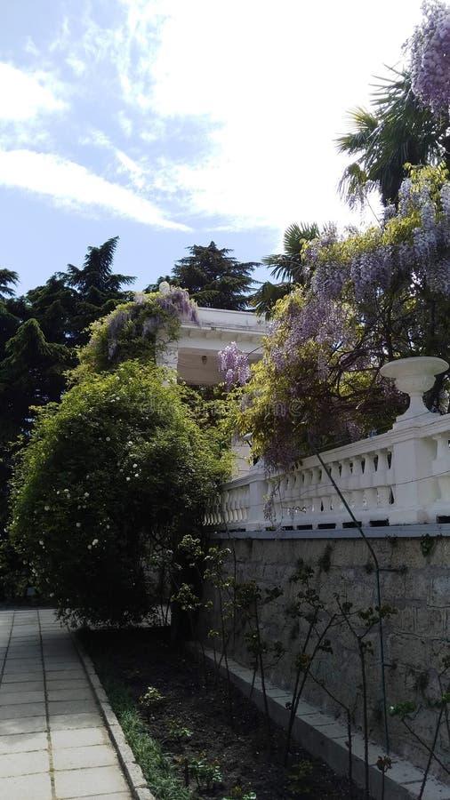 Overzeese kust van Yalta in de Krim royalty-vrije stock foto's