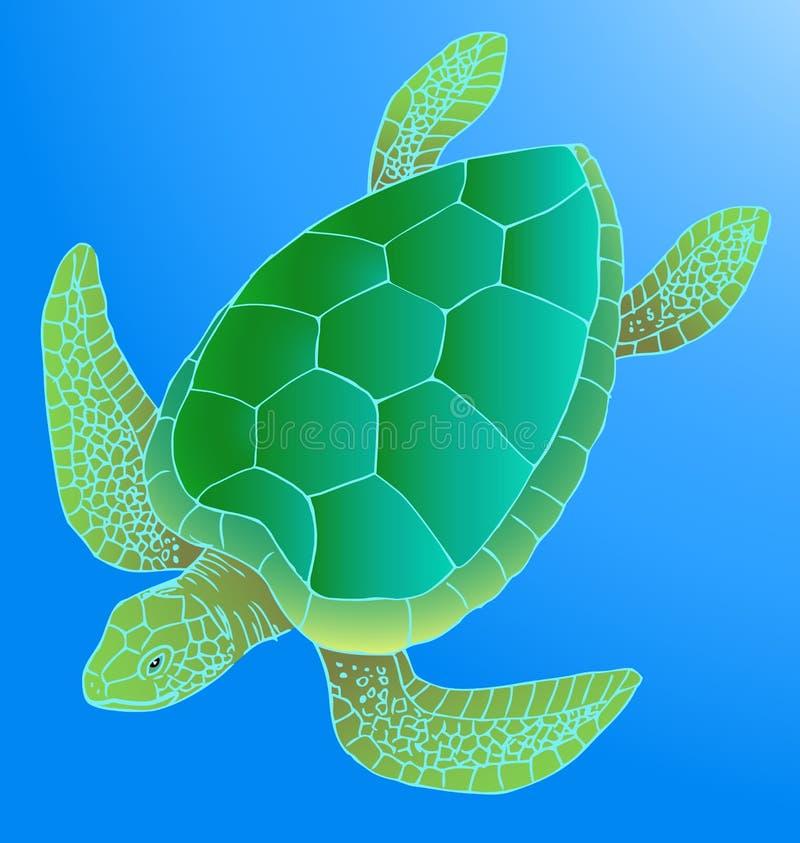 Overzeese schildpad stock illustratie