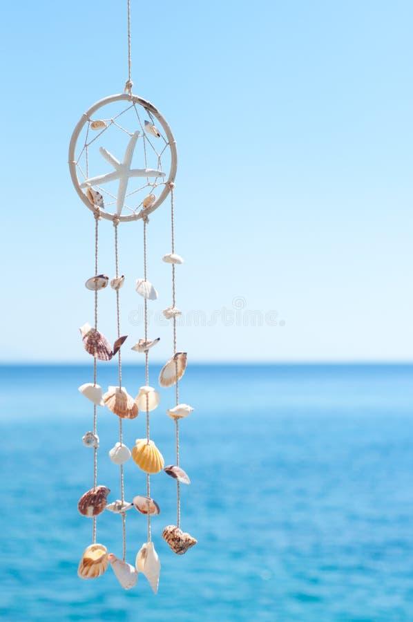 Overzeese shell decoratie stock foto
