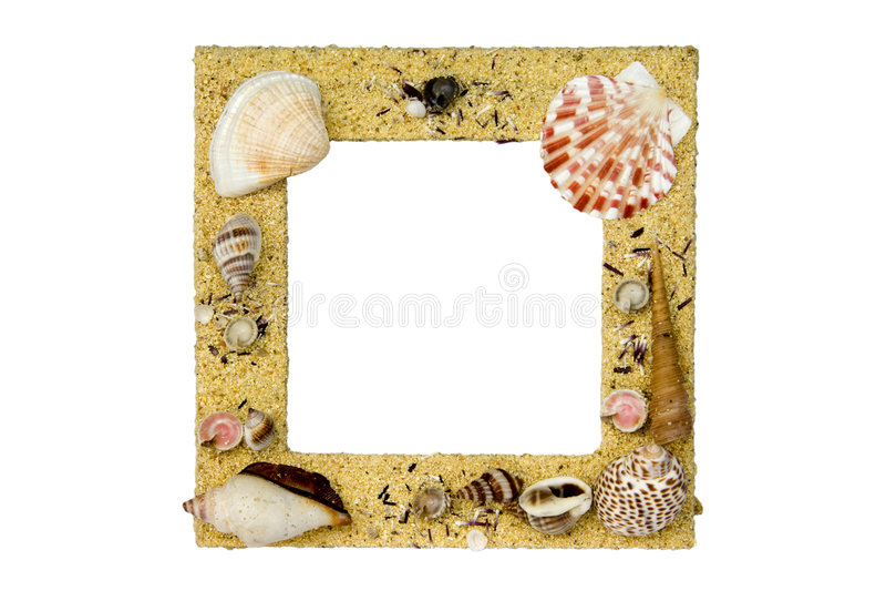 Overzeese Shell Omlijsting royalty-vrije stock foto