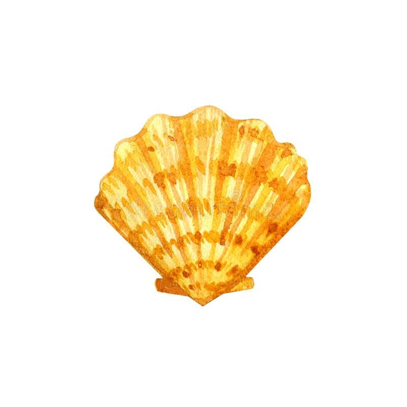 Overzeese shell op een witte achtergrond stock illustratie