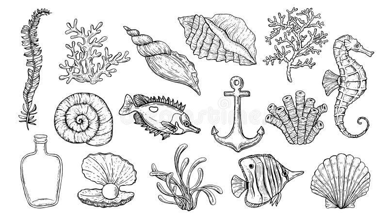 Overzeese shell, zeewier, anker, seahorse, en vissen Hand Getrokken Onderwaterschepselen royalty-vrije illustratie