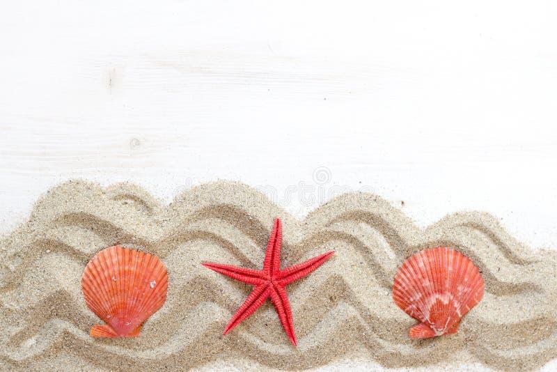 Overzeese shells ANS zeester - Tropische reis stock fotografie