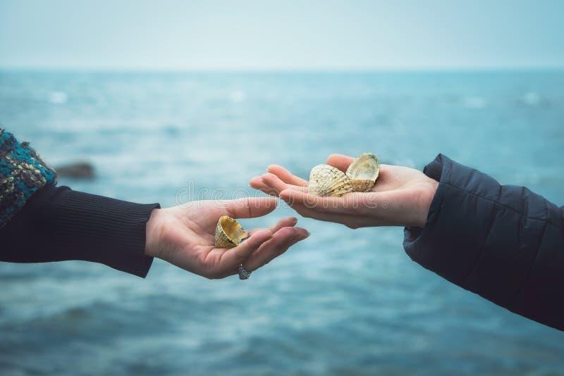 Overzeese shells in de handen van twee meisjes tegen het overzees stock foto's