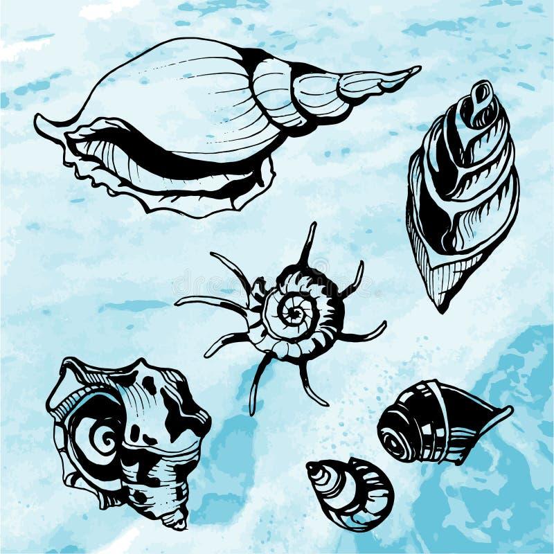 Overzeese shells decoratieve pictogrammen stock illustratie