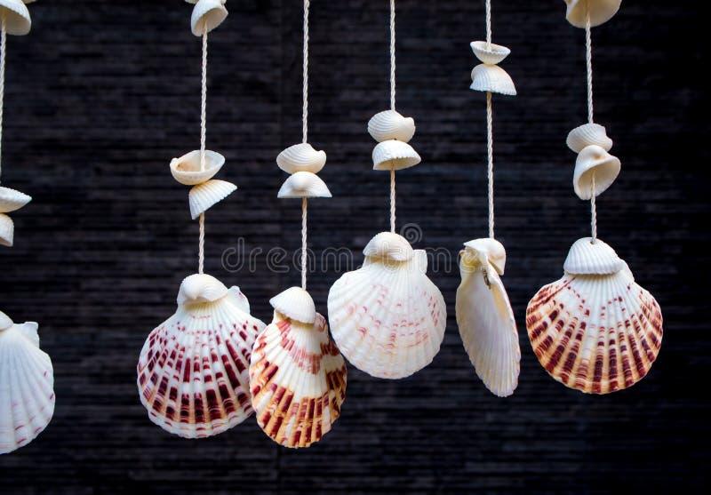 Overzeese shells die door kabel hangen royalty-vrije stock foto