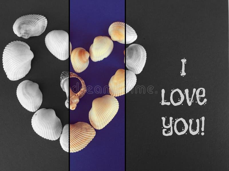 Overzeese shells die een hart vormen stock afbeelding