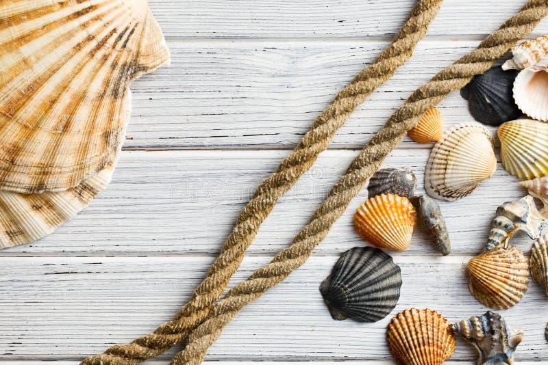 Overzeese shells en kabel royalty-vrije stock afbeeldingen