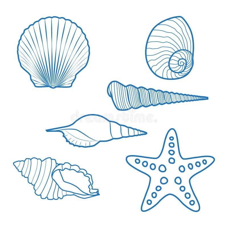 Overzeese shells en zeester stock illustratie