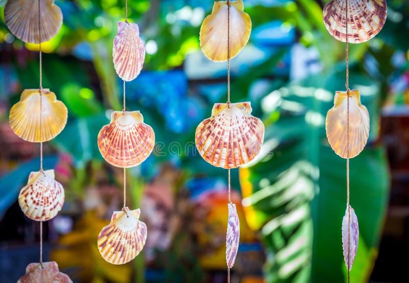 Overzeese Shells Herinneringen royalty-vrije stock fotografie