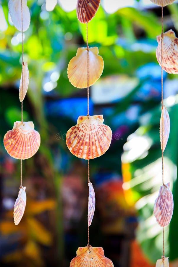 Overzeese Shells Herinneringen royalty-vrije stock afbeelding