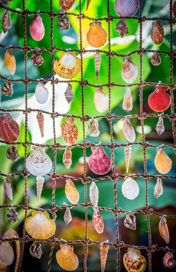 Overzeese Shells Herinneringen royalty-vrije stock foto