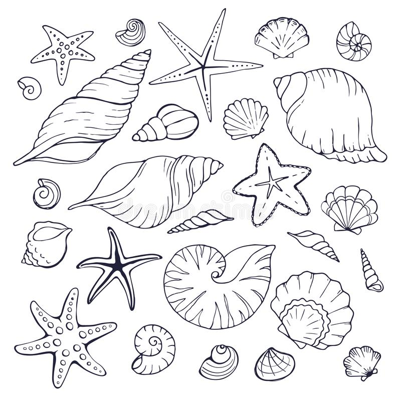 Overzeese shells inzameling vector illustratie