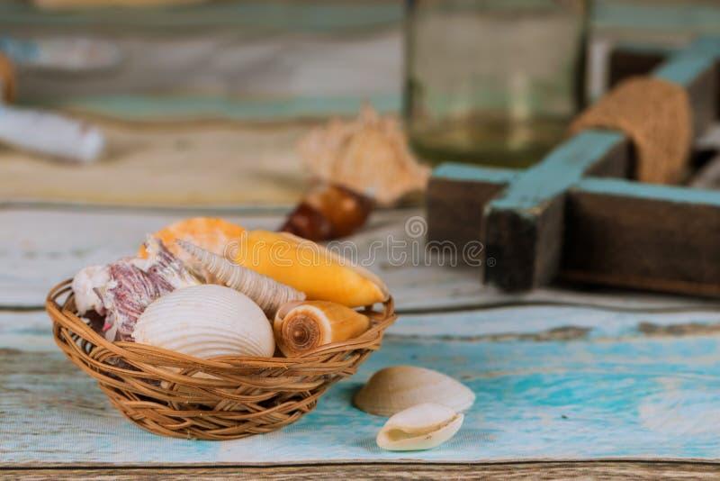 Overzeese shells op blauwe plankachtergrond van rust de zomer royalty-vrije stock foto's