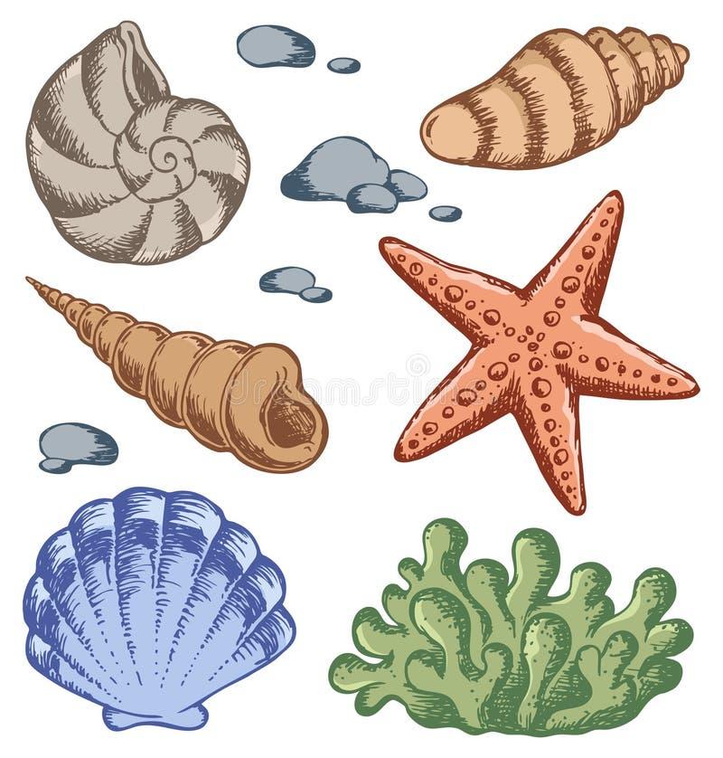 Overzeese shells tekeningen 1 royalty-vrije illustratie