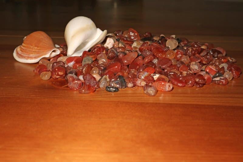 Overzeese stenen en shells die op een houten lijst in massa liggen stock afbeelding