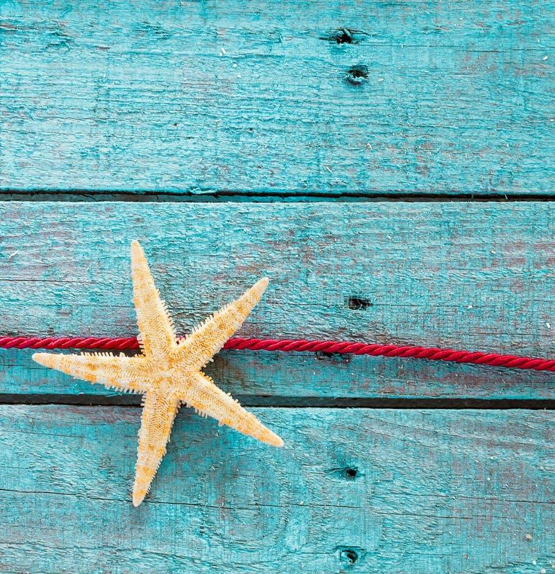 Overzeese ster of zeester met decoratieve rode kabel royalty-vrije stock afbeelding
