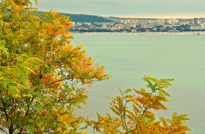 Overzeese toevluchtstad van Gelendzhik in de herfst stock afbeeldingen