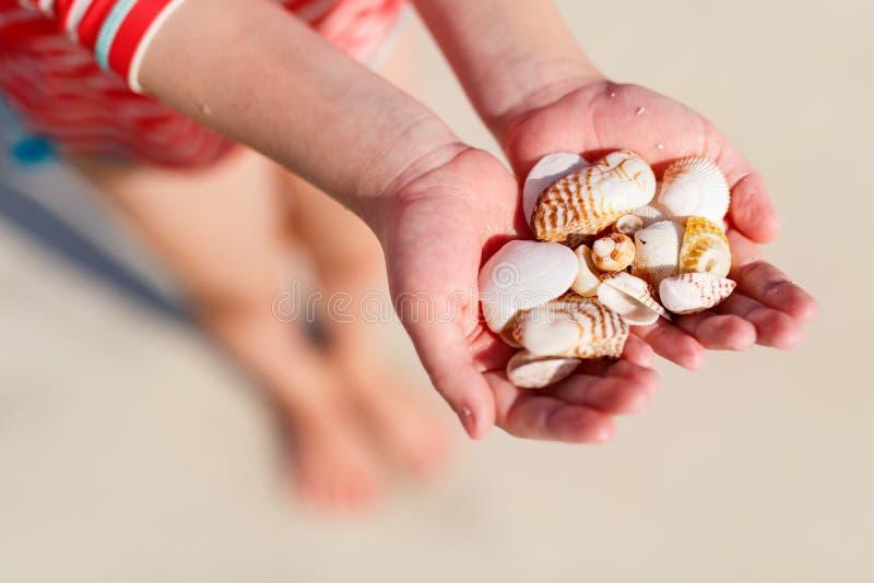 Overzeese van de meisjesholding shells stock foto's