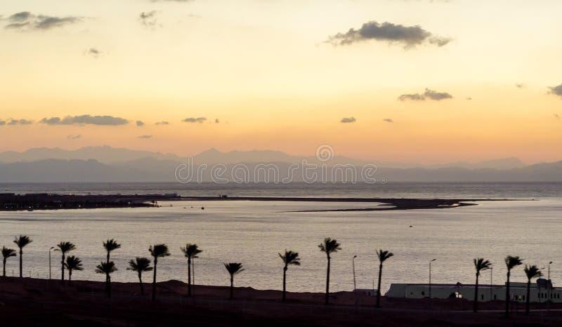 Overzeese van het zonsopganglandschap Rode kust met een silhouet van palmen en hemel met wolken in Egypte royalty-vrije stock fotografie