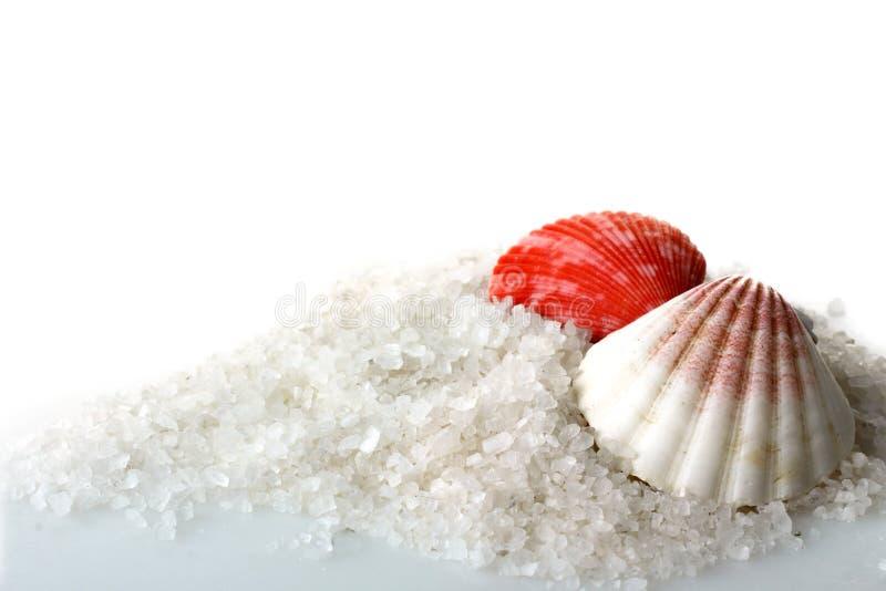 Overzeese zout en zeeschelpen stock afbeeldingen