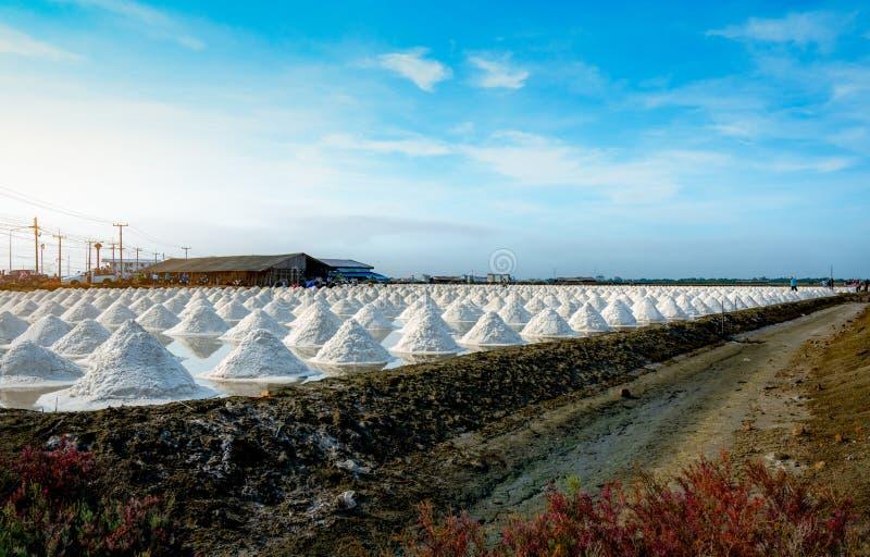 Overzeese zoute landbouwbedrijf en schuur in Thailand Organisch Overzees Zout : Natrium-chloride Zonneverdampingssysteem stock foto's