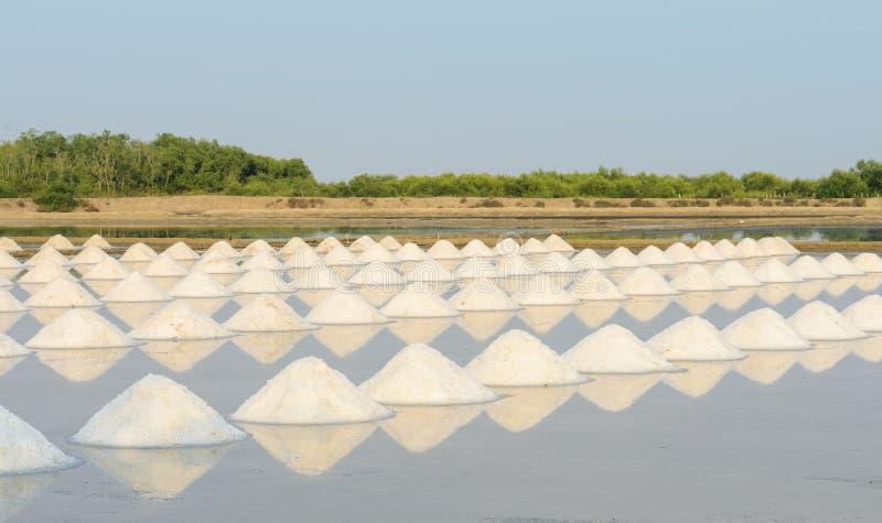 Overzeese zoute vijver, Thailand stock foto